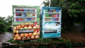【本店】楽しい夏の思い出に淡路島ならではのあの自販機で記念写真どうですか?