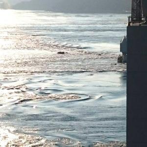 【本店】淡路島で一番うずしおに近い大鳴門橋下の展望台で絶景を楽しもう!!