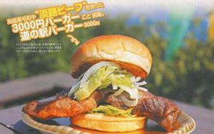 ぴあMOOKS関西版日帰りドライブ | あわじ島 前略、道の駅バーガーが紹介されました。