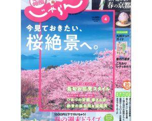 じゃらん(今見ておきたい、桜絶景へ。)