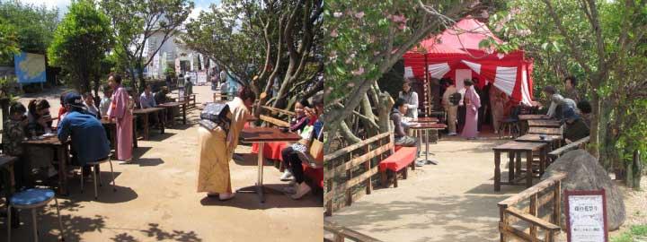 道の駅うずしお「藤の花祭り」