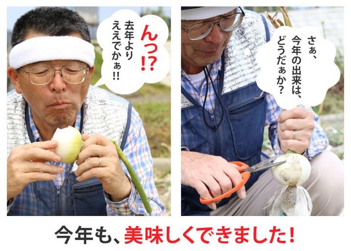 てっちゃんの淡路島白たまねぎ(ホワイトベアー)